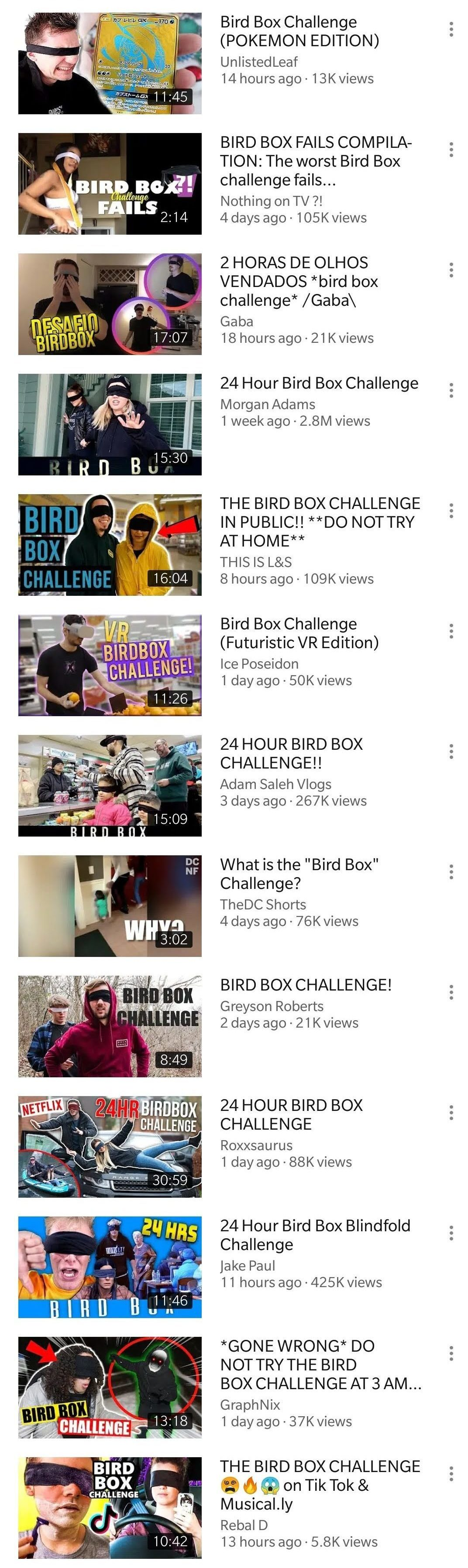 Bird box Challege on Youtube