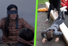 Bird Box Challenge Featured Image